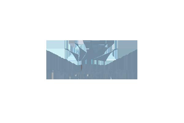 Міжнародний аеропорт ім. Данила Галицького