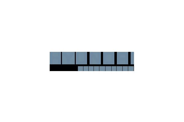 Hyundai Technology (SSD диски, карти пам'яті, USB Flash Drive)
